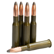 762x54R sp 203 grain ammunition